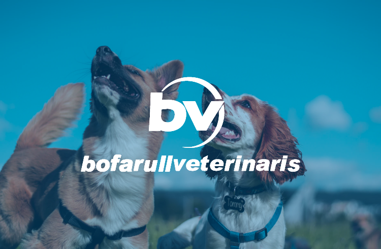 Bofarull Veterinaris